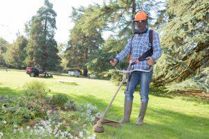 Gartenarbeit, Rasen mähen, planzen Gebäudereinigung Kruppa