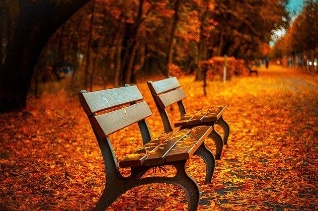 Treppenhausreinigung, Treppenhausreinigung im Herbst